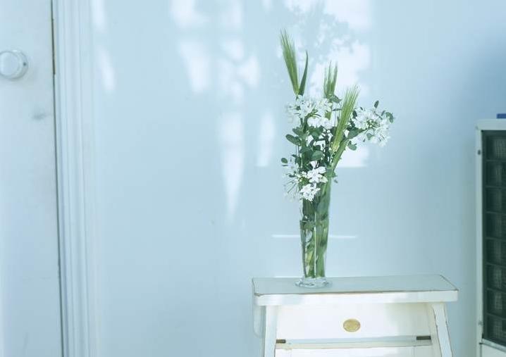 春日小清新 家居花草植物盆栽摆设