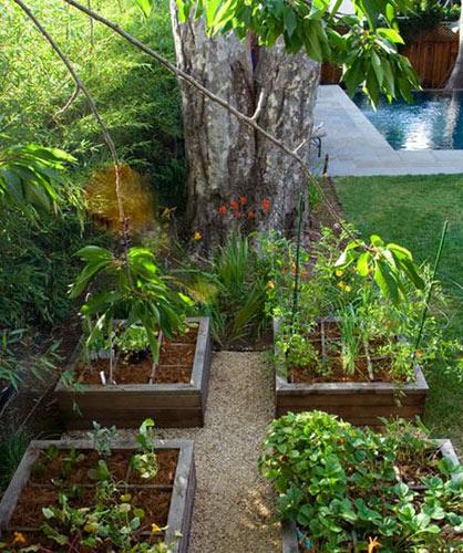 25平自家小花园设计图展示