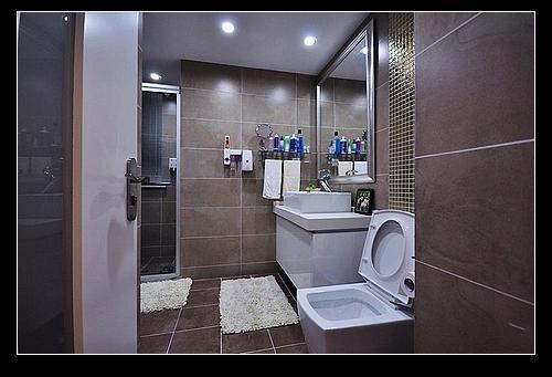 厕所 家居 设计 卫生间 卫生间装修 装修 500_341