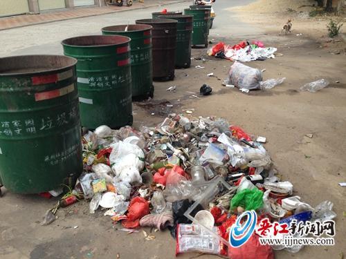 """在该村临时菜市场旁,9个垃圾桶被""""冷落"""",而垃圾桶旁的地上却是一大堆"""