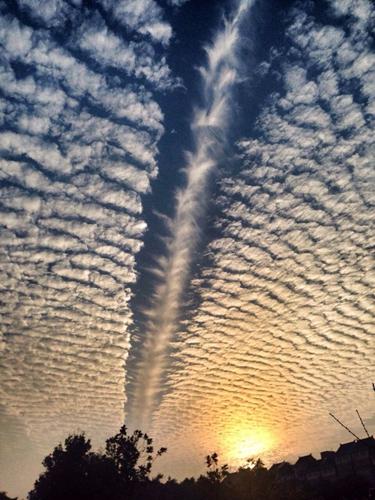 社会资讯_也是醉了 鱼鳞云告诉你什么是赞爆了的天空—晋江新闻网