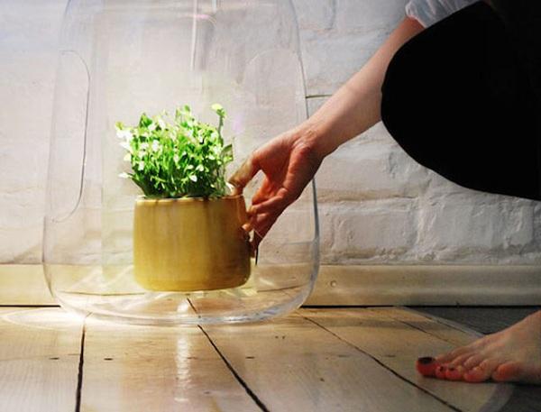 创意微型温室灯罩 Milo / Lightovo