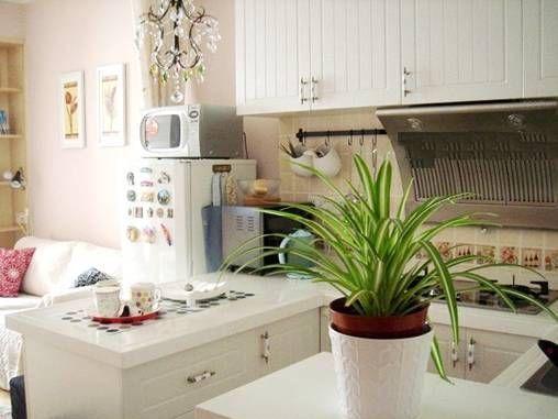 打造无烟日 开放式厨房防烟技巧