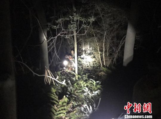 消防试卷搜救:南平福建5名小学生山里迷路终获pep年级下册四小学英语黑夜图片