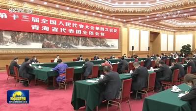 习近平参加青海代表团审议