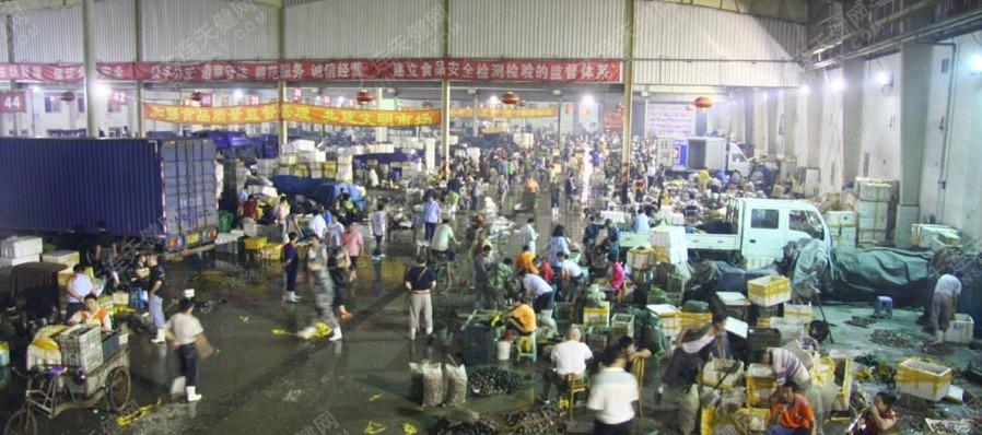 凌晨大连海鲜批发市场的繁忙景象!